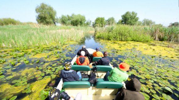 Cu barca prin Delta Dunării