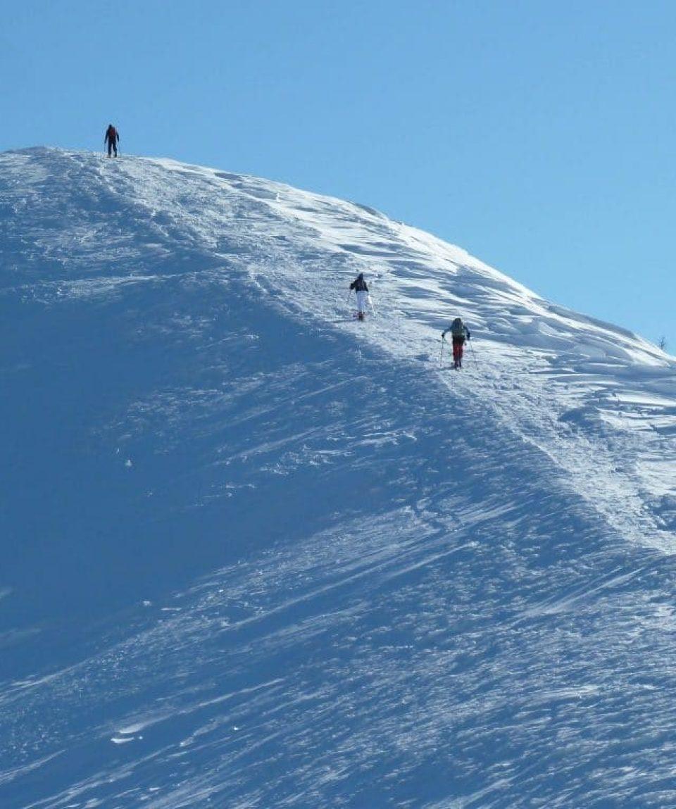 schi de tură
