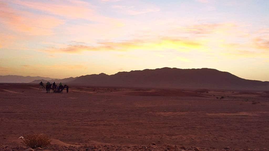 Caravana de cămile în deșert