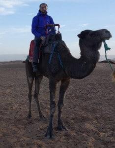 În deșert pe camilele marocane