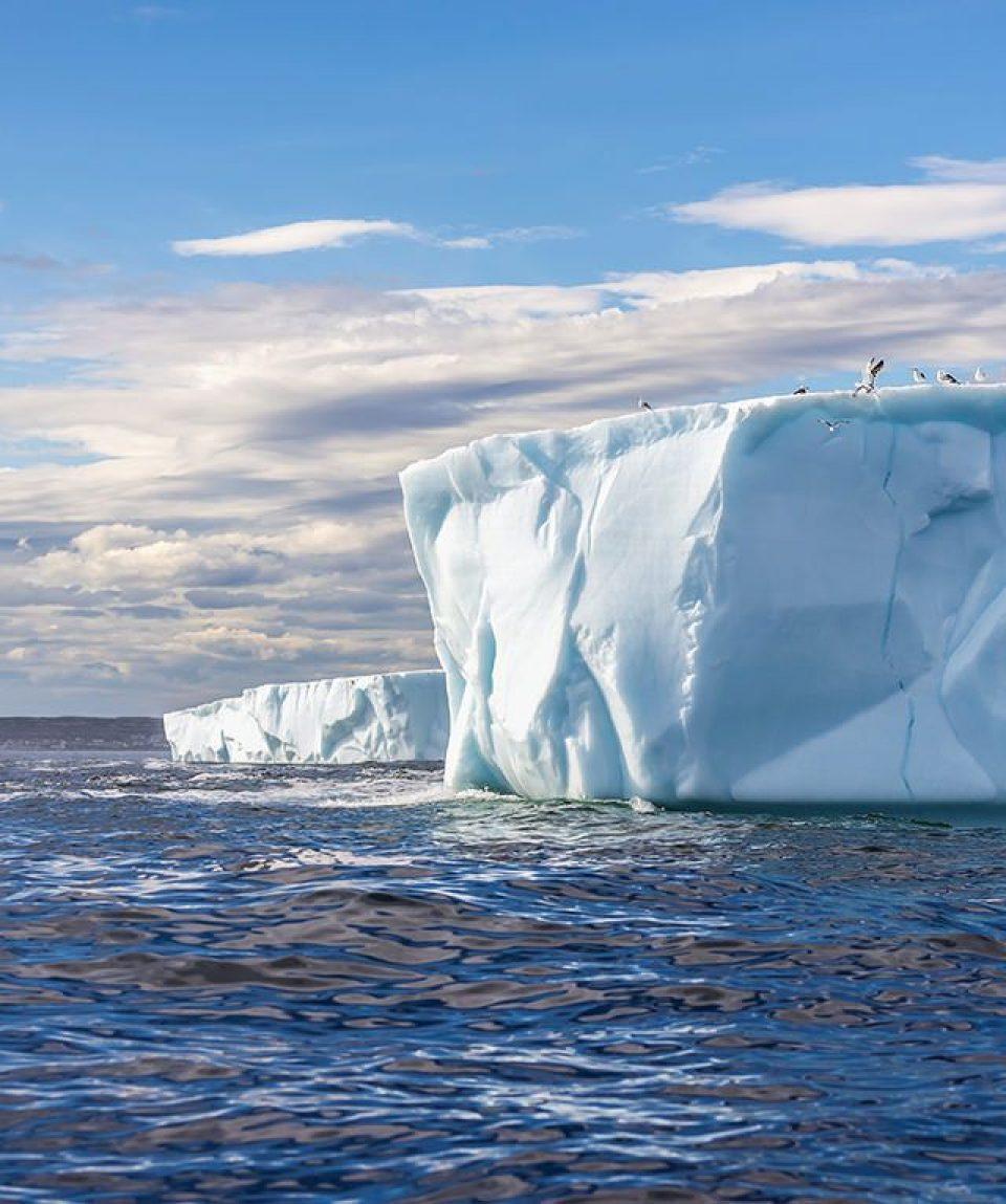 antarctic-sound