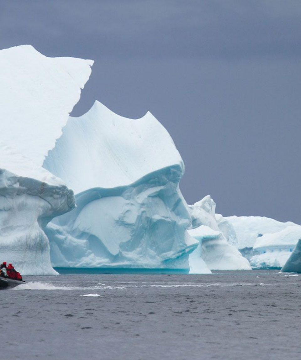tour-around-icebergs