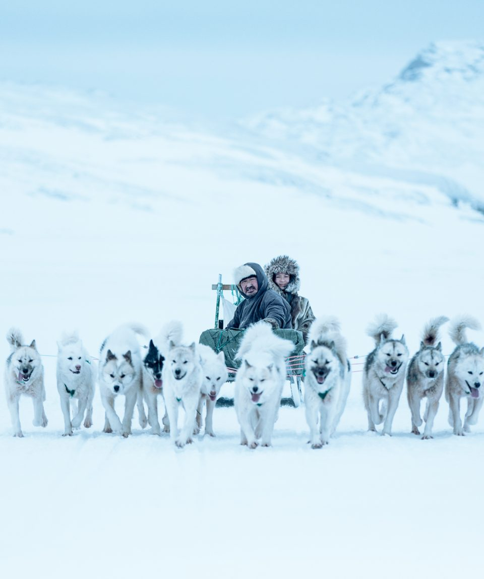 A dog sled trip between Ilulissat and Oqaatsut in Greenland