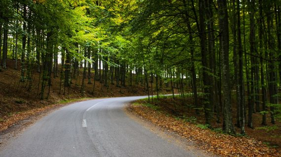 Drumul spre Lacul Sfânta Ana