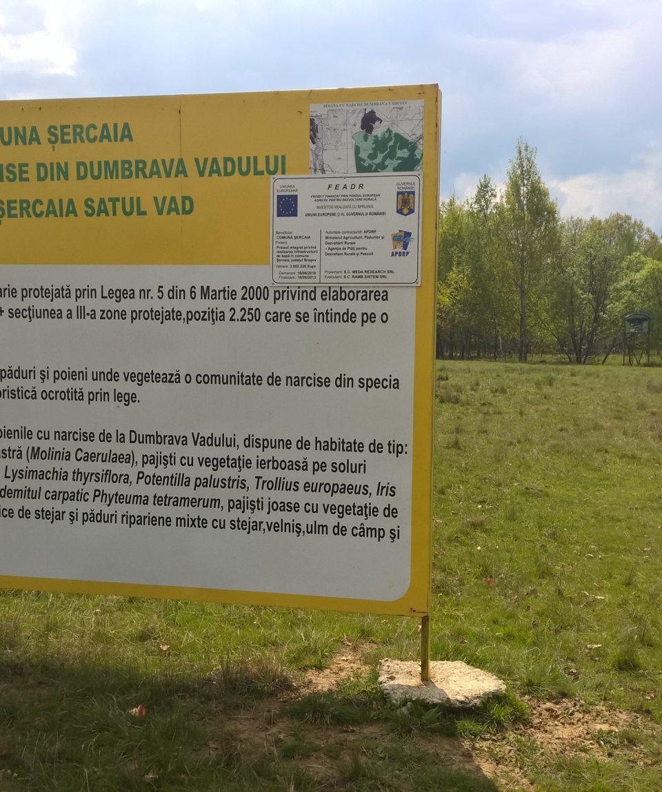 Poiana Narciselor - Rezervație naturală