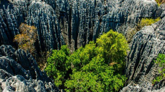 Tsingy - Bemaraha