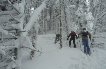 backcountry skiing 3