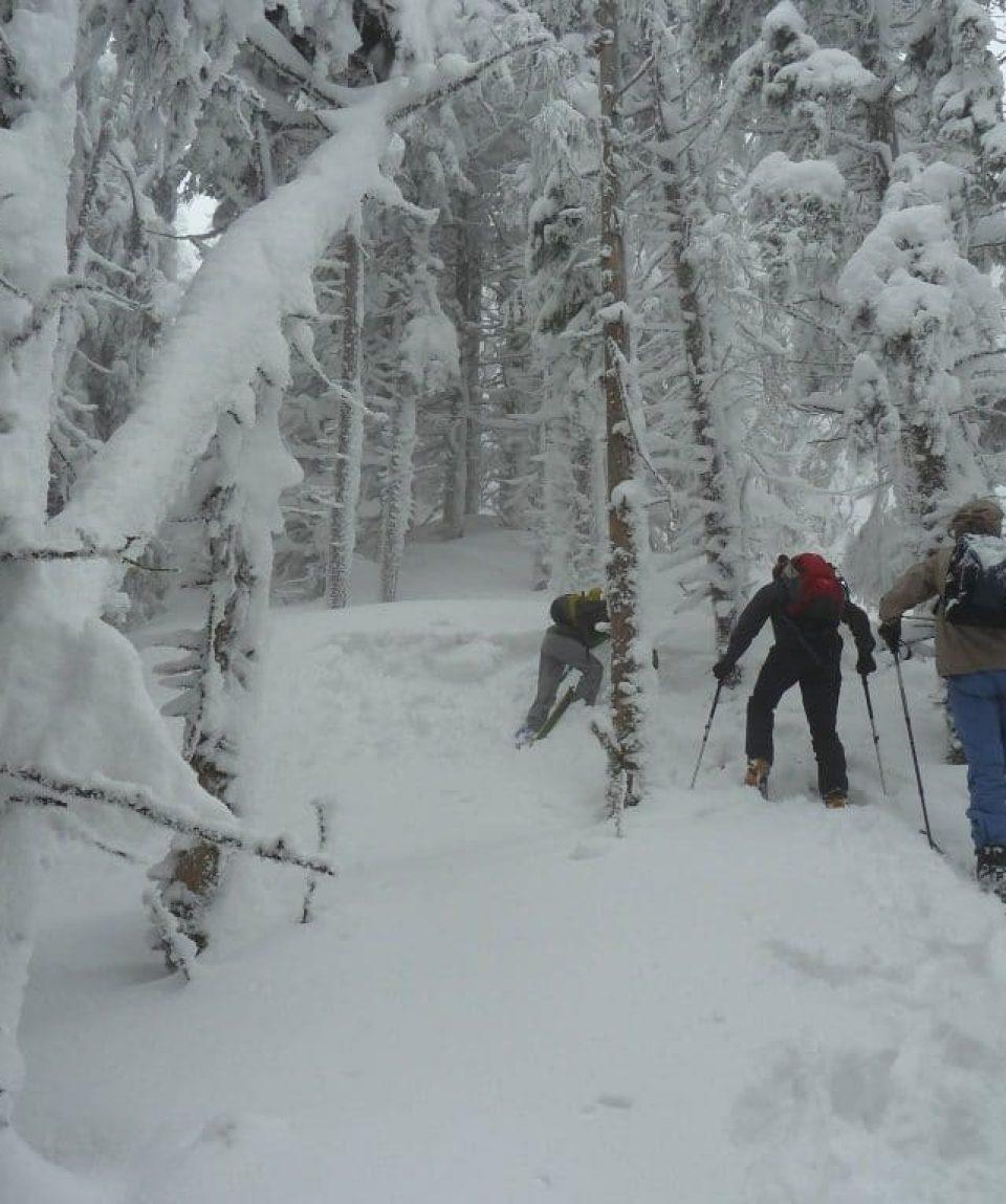backcountry skiing 3
