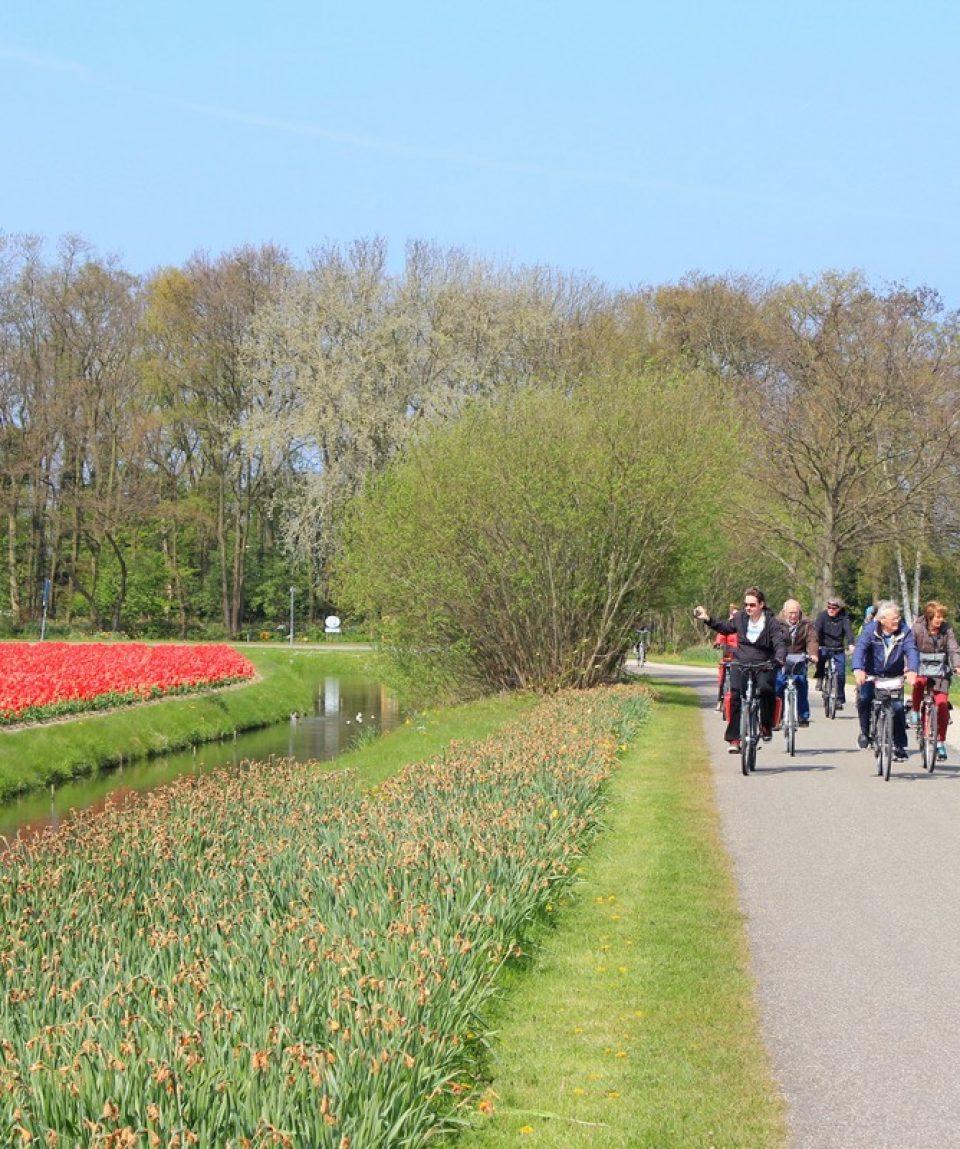 Cu bicicleta prin Olanda