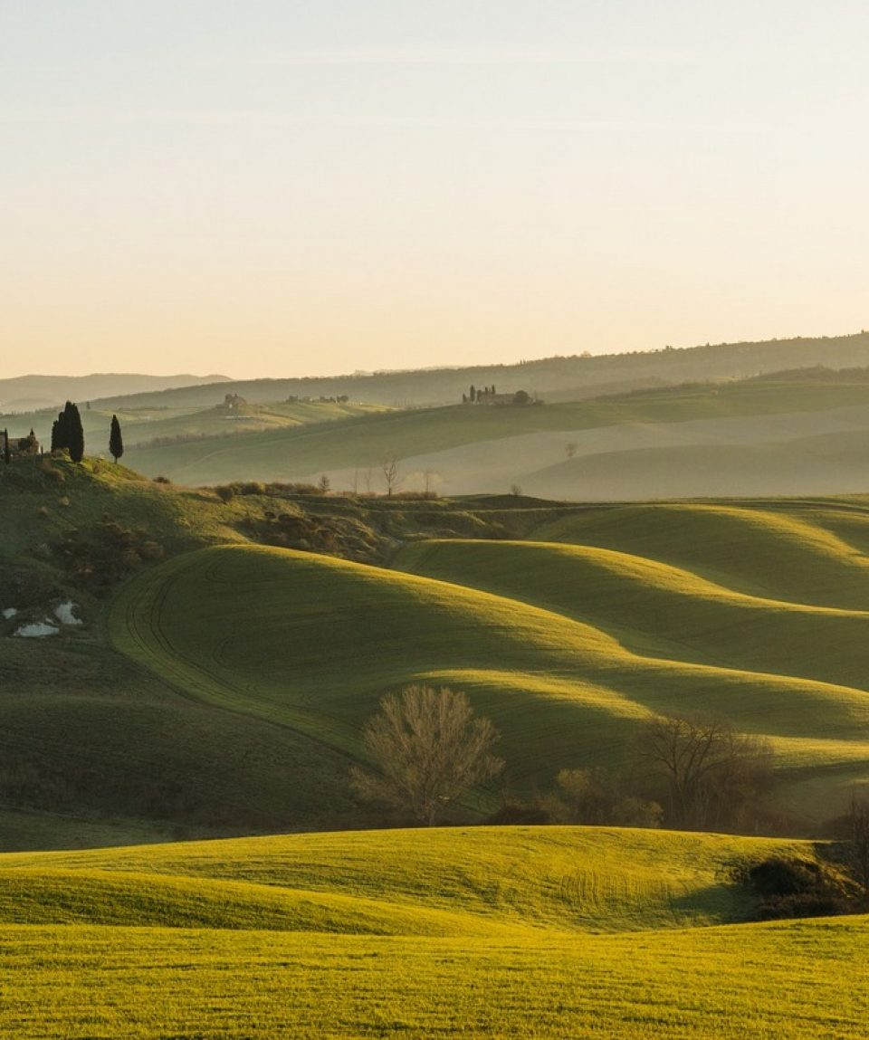 Dealuri in Toscana