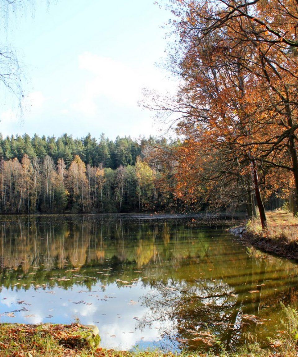 Lac din Cehia