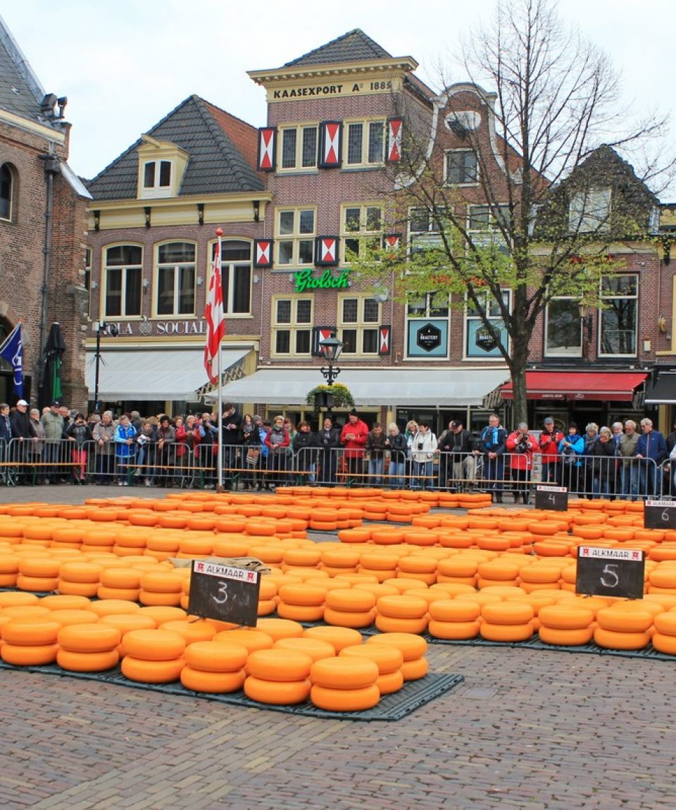 Piata de branzeturi in Olanda