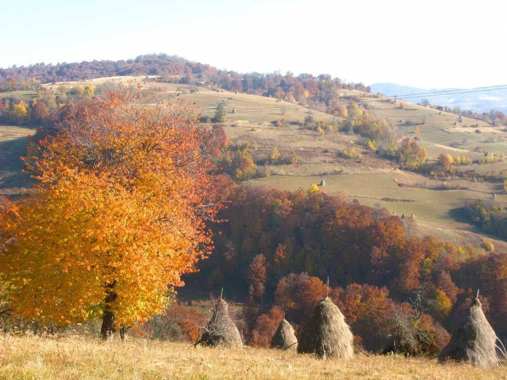 Peisaj din Munții Trascău