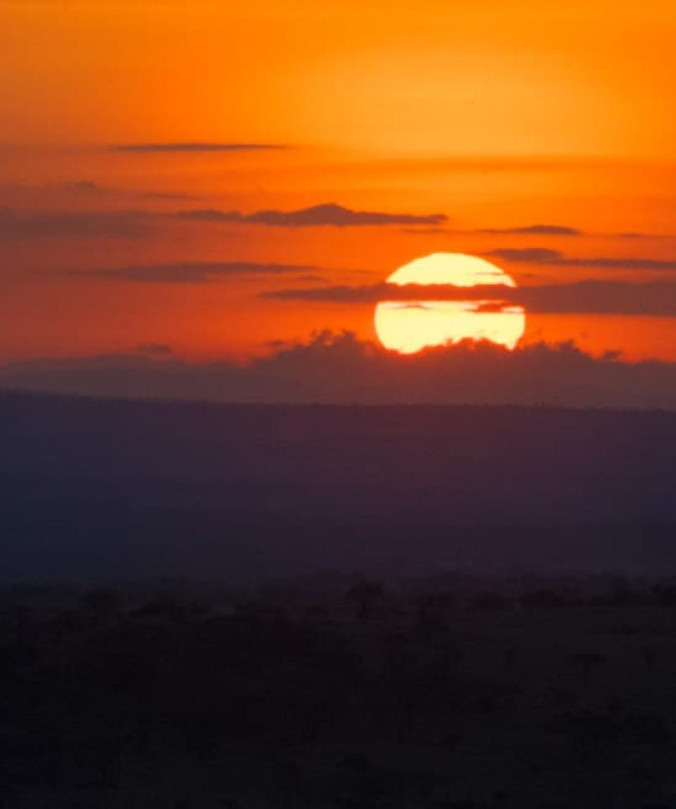 Apus în Serengeti