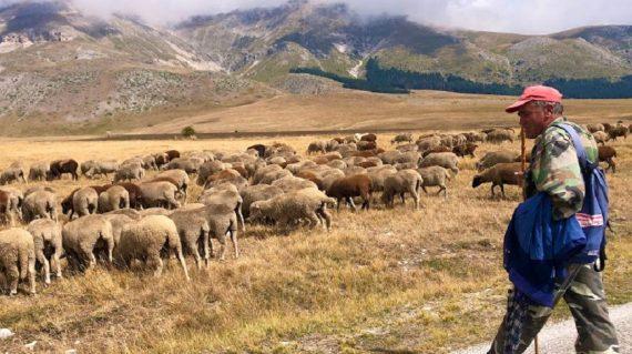 Pe urmele transhumantei din Italia (4)