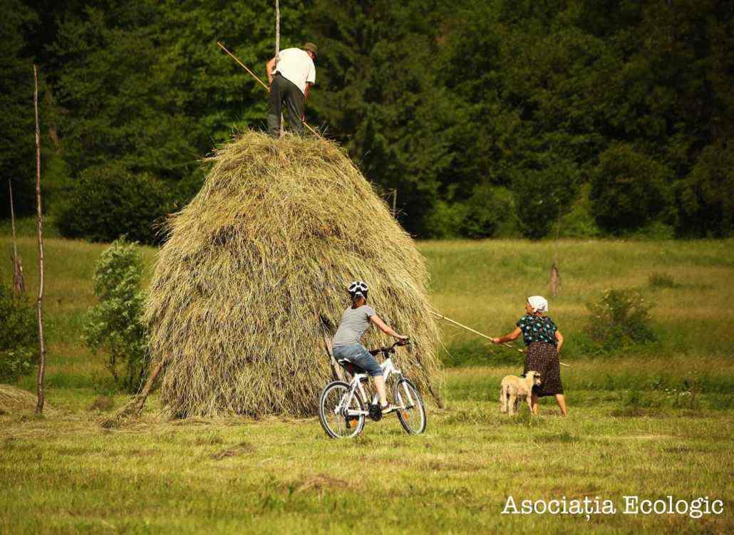 Cu bicicleta în Maramureș
