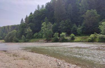 La râu în Vama Buzăului